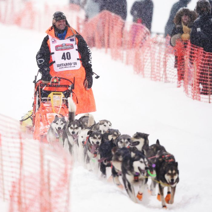 Thomas Wærner's Unique Experience When He Won The Iditarod Dog Sled 2020
