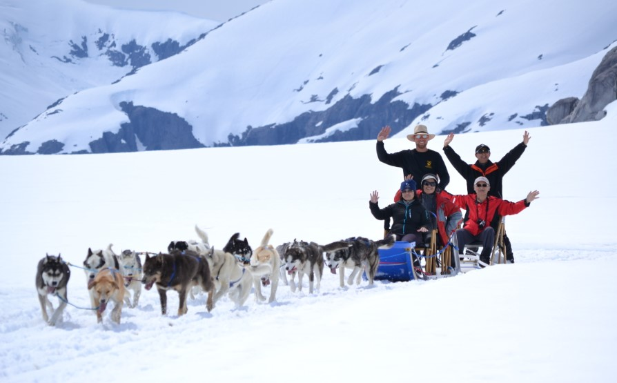 Dog sled functions in the past